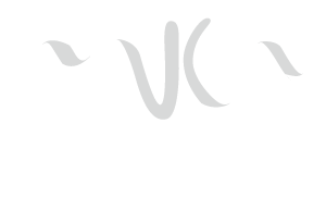 Marketnnova Marketing Solutions